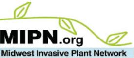 MIPN logo