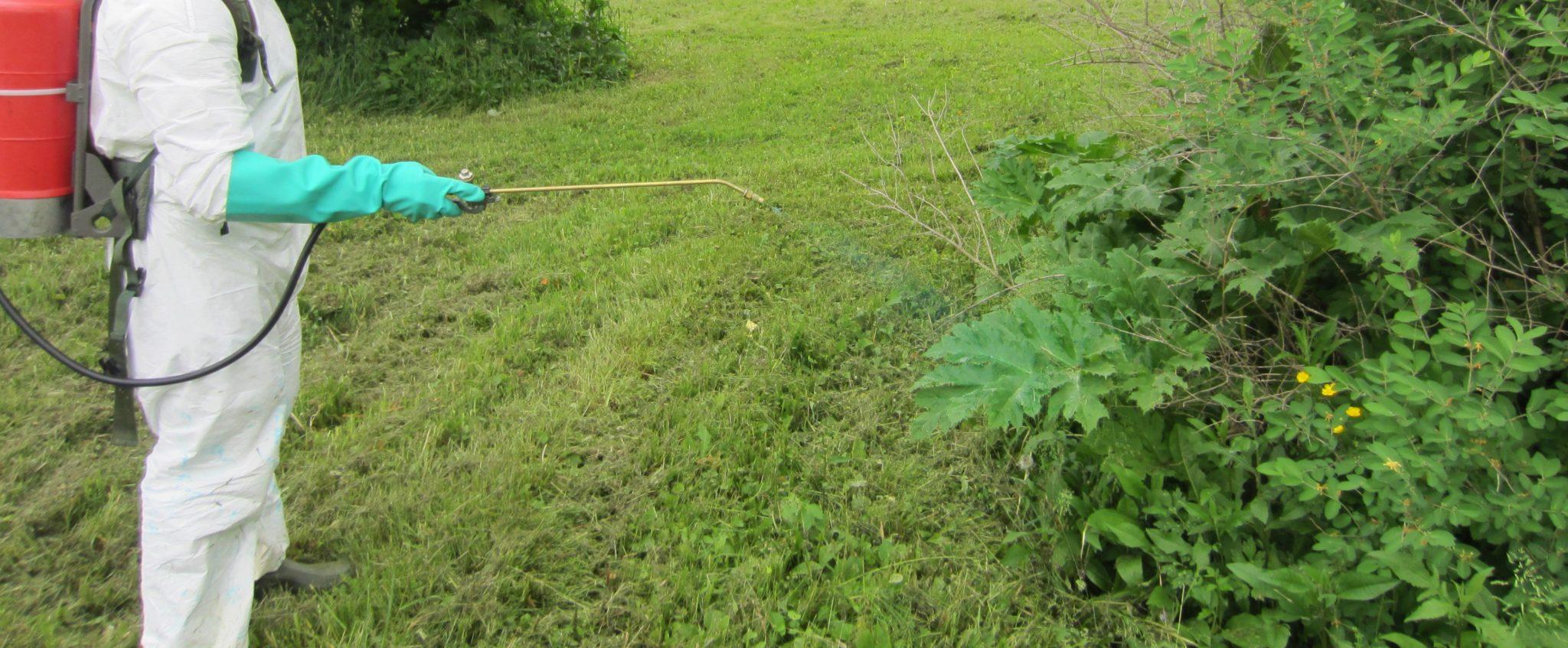 Foliar Herbicide
